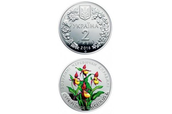 2016 Монета Украина 2 гривны 2016 г. КУКУШКИНЫ (ВЕНЕРИНЫ) БАШМАЧКИ